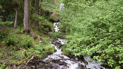Wahkeena Falls in the Columbia River Gorge, Oregon.