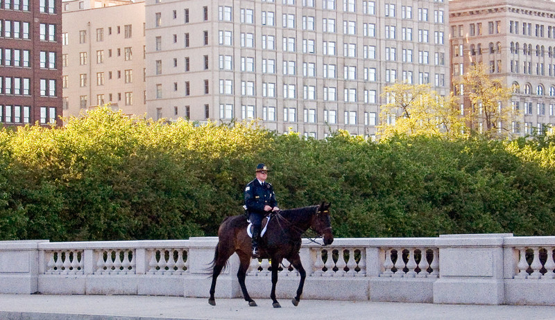 Patrolling on Chicago, poor horse!