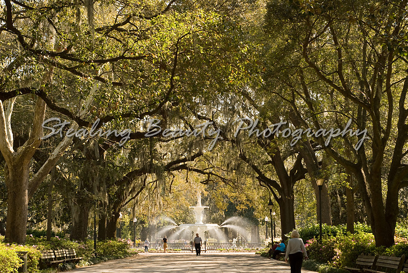 Forsyth Park & fountain