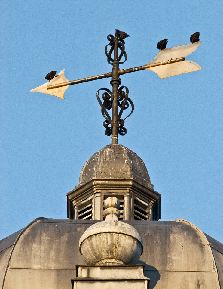 Wind Vane in Custom House in Charleston, South Carolina.