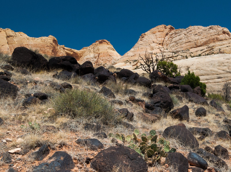 Black and White at Capitol Reef National Park