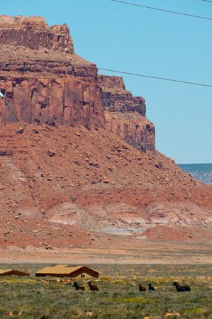 Utah National Parks 2012