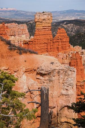 Ponderosa Point at Bryce Canyon