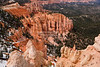 Rainbow Point at Bryce Canyon