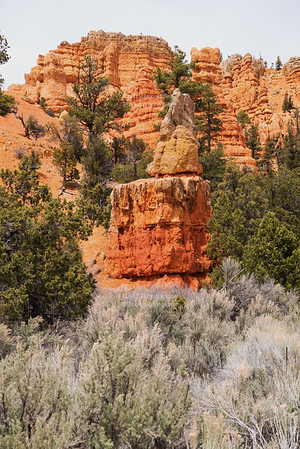 Red Canyon in Dixie National Foresst