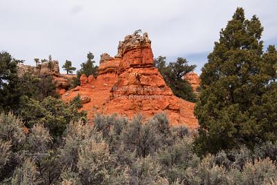 Red Canyon in Utah