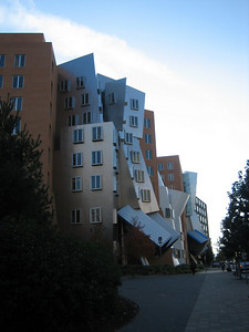 Okay, so these first couple of photos aren't in Utah. This is the Stata Centre at MIT, designed by Frank Gehry (the same guy who designed the titanium-covered Guggenheim Museum in Bilbao). Apparently MIT sued Gehry because the building leaks and has cracks. Also, in winter, snow builds up in those funny angles and then falls down in big dangerous chunks. This building is right across the road from Roman Stocker's lab.