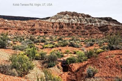 Utah colours