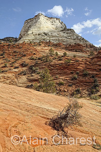 Zion National Park, Utah, USA, October / Octobre, 2013