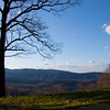 Blue Ridge Pkwy_040809_0243