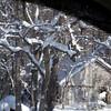 Snow Storm_122009_110431