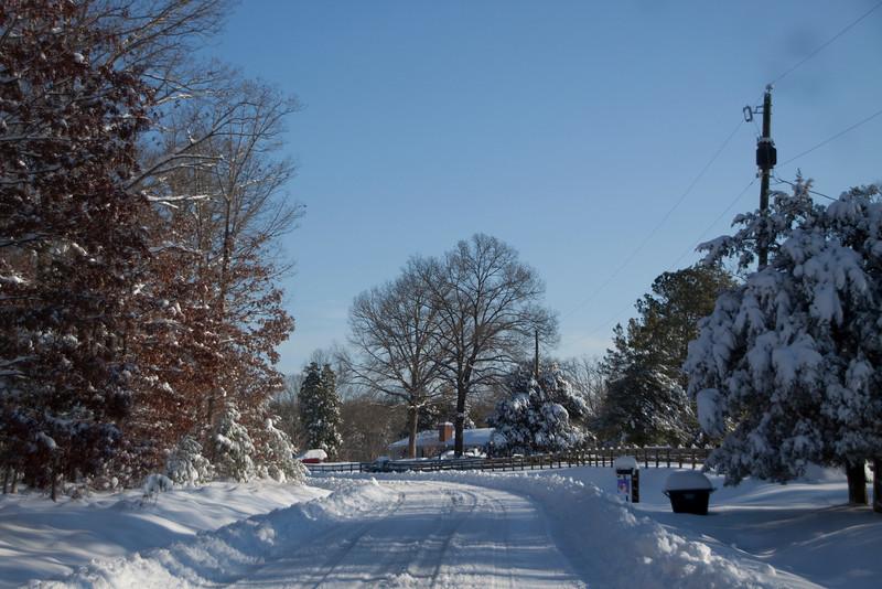 Snow Storm_122009_104715 (1)