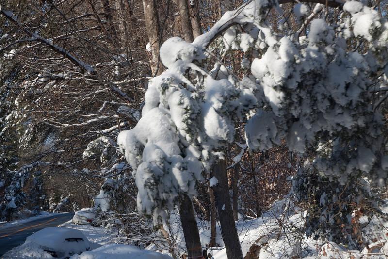 Snow Storm_122009_112016
