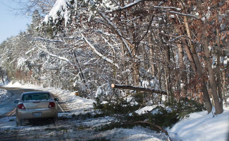 Snow Storm_122009_112519