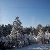 Snow Storm_122009_110237 (2)