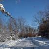 Snow Storm_122009_104934