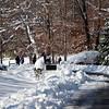 Snow Storm_122009_121349