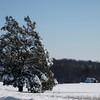 Snow Storm_122009_120752