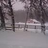 Winter Images - turner rd goochland020610_133658