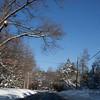 Snow Storm_122009_120515