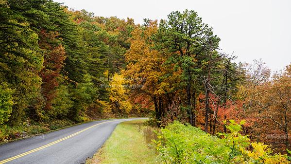 Blue Ridge Parkway, Milepost 42.2, Irish Creek Valley Overlook