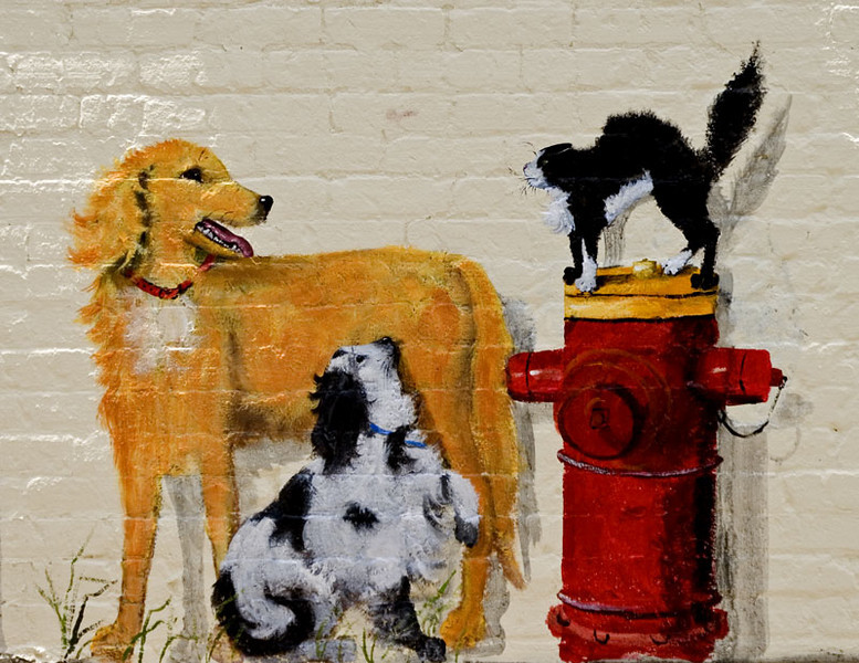Dogs and Cat mural Downtown Hampton, Virginia.