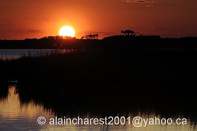 Sunset on Back Bay NWR
