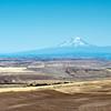 Washington State and Oregon Road Trip