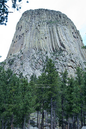 At the foot of Devil's Tower National Monument, Wyoming, USA