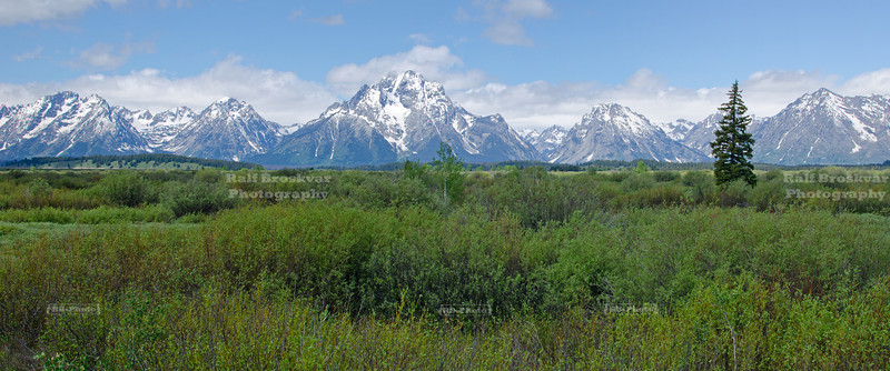 Scenic panorama of the snow-capped Teton Range, Grand Teton National Park, Wyoming, USA