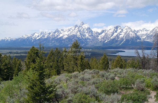 View from Signal Hill towards the Teton range with the top of Grand Teton (13,770 ft) in the clouds. Grand Teton National Park, Wyoming, USA
