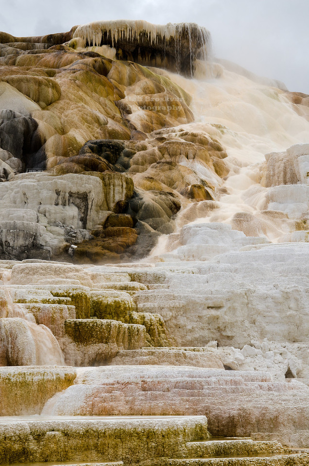 Palette Spring in Mammoth Hot Springs