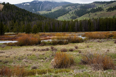 Gallatin River Valley in Yellowstone National Park