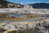 Sinter Terraces at Mammoth Hot Springs