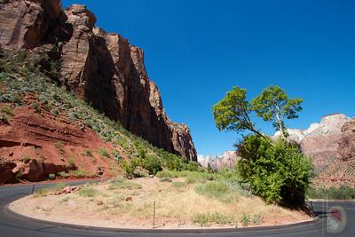 Zion National Park - Driving through the park.