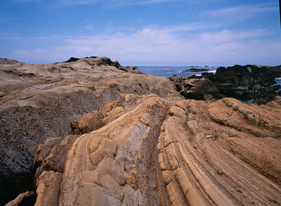 Point Lobos State Park, Big Sur, CA
