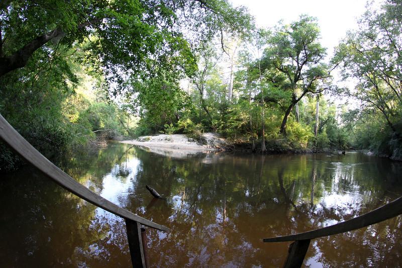 Little Tchefuncte River at Little River Bluffs, Folsom, LA