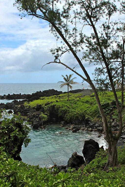 Somewhere on the Road to Hana, Maui