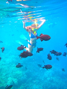 Snorkeling in Kealakekua Bay, Big Island July 2012