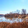 Heinz Wildlife Refuge