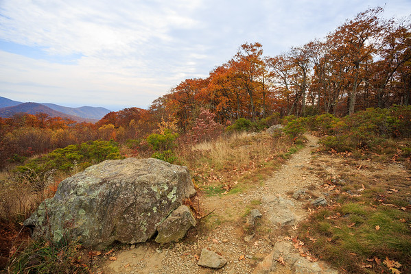 Shenandoah National Park