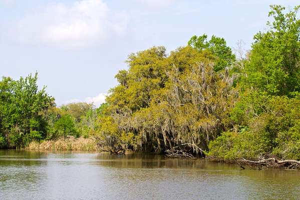 Jean Lafitte National Park