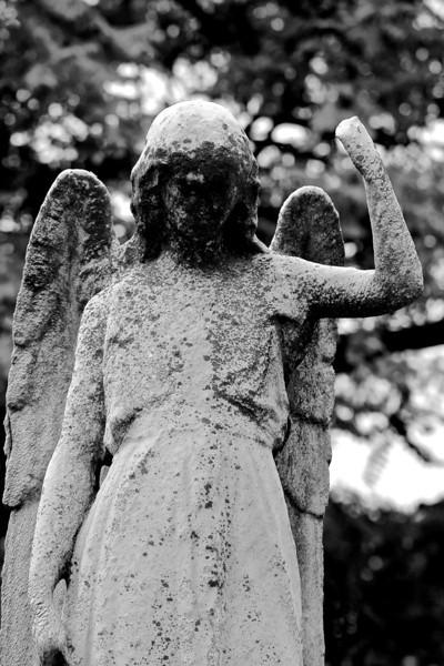 Woodlands Cemetery September 2012