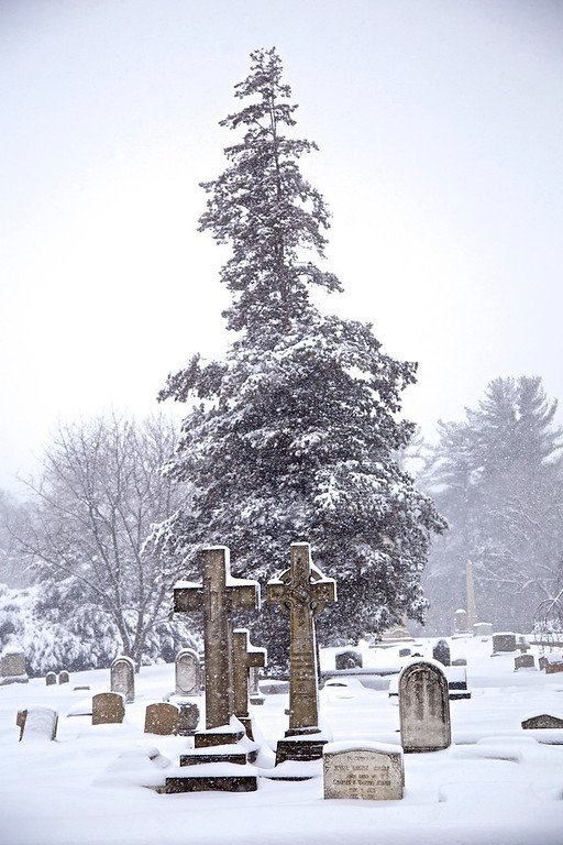 Woodlands Cemetery March 2015