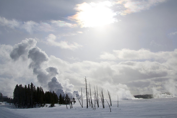 Yellowstone, January 2014