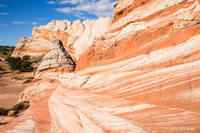 Sandstone waves and tower in Northern Arizona