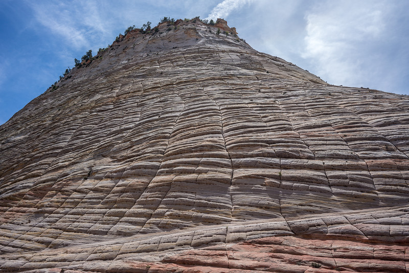 The Checkerboard Mesa at Zion