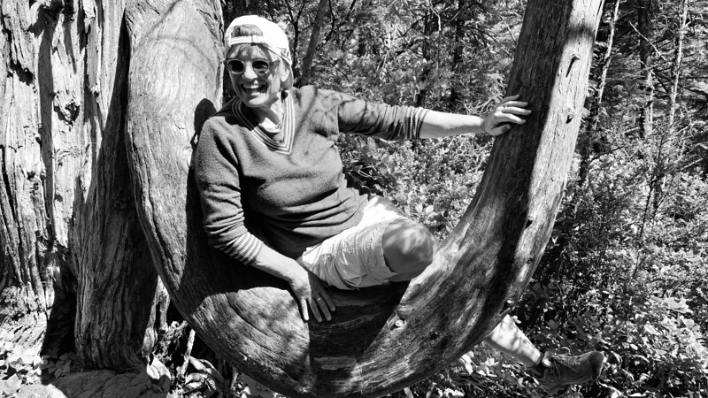 Cindy relaxes in one of the many Dr. Seuss trees found along the trail.