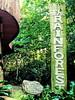Uganda Rainforest Lodge, Mabira Forest