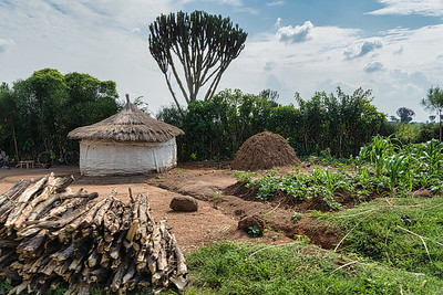 One of the homes in the Karamojong community i visited just outside Kidepo National park.
